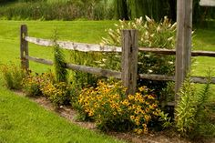 Fence and Flowers Combination