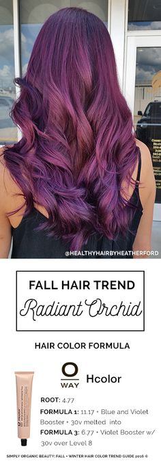 Radiant Orchid Purple Hair Color for Fall 2016Gorgeous plummy and vibrant violet tones make this hair color trend perfect through winter 2017! | Hair By Heather Ford with Oway Hcolor | Featured in Simply Organic Beauty 2016 Fall + Winter Hair Color Trend Guide