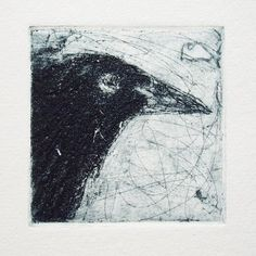 Dry point etching of a crow Abstract Charcoal Art, Charcoal Drawings, Pencil Drawings, Art Drawings, Crow Pictures, Drypoint Etching, Hipster Drawings, Collage Illustration, Funky Art