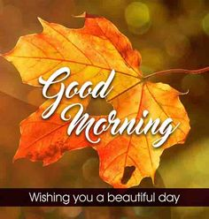 Brown leaves the beautiful good morning image Good Morning Coffee Images, Very Good Morning Images, Good Morning Images Flowers, Good Morning Roses, Good Morning Picture, Morning Pictures, Morning Pics, Inspirational Good Morning Messages, Good Morning Love Messages