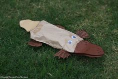 Paper-bag Perry the Platypus Craft Paper-bag Perry the Platypus Craft - Cook Clean Craft Australia For Kids, Australia Crafts, Australia Animals, Classroom Crafts, Preschool Crafts, Crafts For Kids, Preschool Learning, Preschool Bible, Preschool Christmas