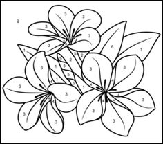 Tropical Flower - Printable Color by Number Page