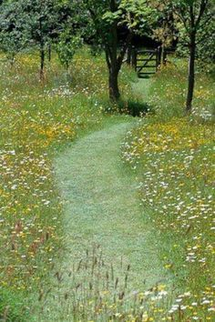 Mown path through wild flower meadow. Pinned to Garden Design by Darin Bradbury.Mown path through wild flower meadow. Pinned to Garden Design by Darin Bradbury. Meadow Garden, Garden Cottage, Dream Garden, Prairie Garden, Garden Grass, Wild Flower Meadow, Wild Flowers, Wild Flower Gardens, Flora Flowers