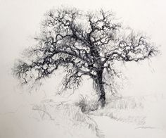 diana lange | Tree | Pinterest | Diana, Generative art and Illustrations