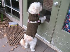 Ravelry: Hearts and Bones Dog Sweater pattern by Catherine Head...  free pattern.... wostered wgt