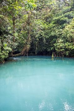 The sky blue river in Costa Rica: Rio Celeste. Click through to read our guide to visiting this magical place: http://mytanfeet.com/activities/tips-visiting-rio-celeste/