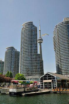 Habourfront Toronto, ON- Canada Ottawa, Nova Scotia, Quebec, The Beautiful Country, Beautiful Places, Torre Cn, Toronto Architecture, Toronto Ontario Canada, Downtown Toronto