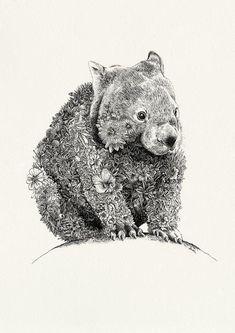 Wombat - Giclée Print – Marini Ferlazzo - Art for Wildlife Artwork Images, Art Pictures, Animal Pictures, Australian Animals, Australian Art, Animal Sketches, Animal Drawings, Australia Tattoo, Toile