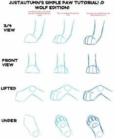 Imagen de how to draw, wolf paws, and realistic draw