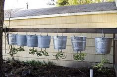 A Taste of the Earth: making upside-down tomato buckets