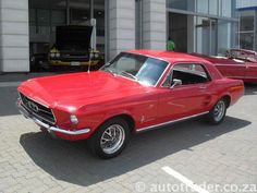 1967 ford mustang - Muscle Cars