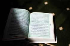 Learn Tafseer online with qualified tutors. Learn the meaning of the verses and the explanation of the meaning of the Holy Quran. Quick Books Accounting, Orange Book, Online Quran, Learn Quran, Holy Quran, Quran Tafseer, Allegedly, Hadith, Verses