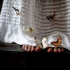 Sometimes i only need to stand where i am to be blessed -Mary Oliver Butterfly feet Pema Chodron, Butterfly Kisses, Butterflies, Butterfly Net, Butterfly Project, Madame Butterfly, Butterfly Photos, Quelques Photos, French Photographers