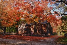 Hartwell Tavern Under Canopy Of Fall Foliage Photograph