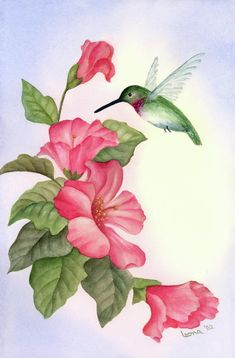 hummingbird paintings | Hummingbird With Hibiscus Painting by Leona Jones - Hummingbird With ...