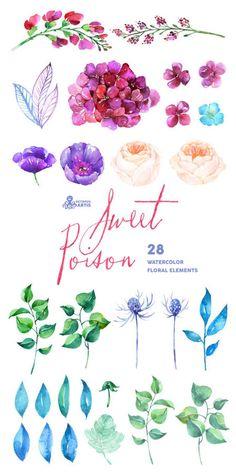 Sweet Poison: 28 Watercolor Elements hydrangea by OctopusArtis Watercolor Rose, Watercolor Cards, Watercolour Painting, Tattoo Watercolor, Watercolor Wedding, Art Aquarelle, Guache, Illustration, Rose Tattoos