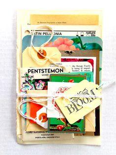 Vintage Garden Ephemera Scrap Pack / DIY Kit / 18+ Pieces / Daily Planner / Junk Journal