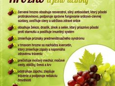 Infografiky Archives - Page 5 of 14 - Ako schudnúť pomocou diéty na chudnutie Health Benefits, Health Tips, Dieta Detox, Organic Beauty, Natural Health, Life Is Good, Healthy Lifestyle, Health And Beauty, Food And Drink