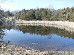 This is a nice piece of land only 6 miles from town and located right on the highway in Versailles, MO.