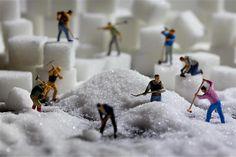 miniature photography - Image: Life in Smallville (© BARCROFT MEDIA/David Gilliver) granulating sugar