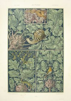 Seder, Anton - Art Nouveau Prints 1890   Purchased this one in France while visiting Lucy, it now hangs in the kitchen
