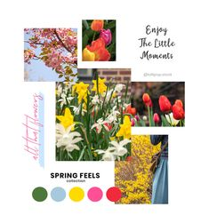 New Collections: APRIL 2019 — Lollipop Stock Membership - Premium Stock Photos For Your Creative Needs! Website Images, Blog Images, Marketing Plan, Media Marketing, Image Newsletter, Business Stock Photos, Twitter Banner, Spring Photos, Seasons Of The Year