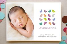 Colorful Birdies Birth Announcements by Bonjour Paper at minted.com