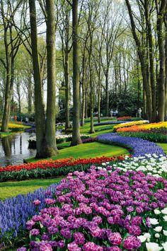 Keukenhof Garden, Lisse, Holland