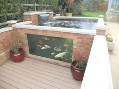 glass walled koi pond
