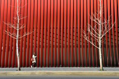 Red tempo Photo by Sho Shibata -- National Geographic Your Shot