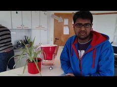 ielts trivandrum ,kerala | COSMO's Lakshman (now in Germany) bags 7.5 in IELTS @ Kottayam(India) - YouTube