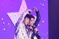 Love, Concert, News, Life, Amor, Concerts