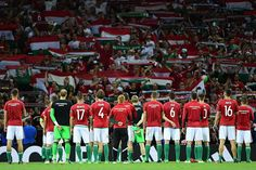 The Hungary players have surely made their fans proud with an impressive #EURO2016