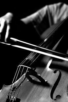 I want a cello and learn how to play so badly.. they're so beautiful <3