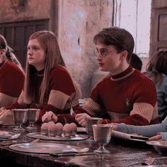 Gina Harry Potter, Harry Potter Ginny Weasley, Gina Weasley, Daniel Radcliffe Harry Potter, Harry And Ginny, Harry Potter Icons, Harry Potter Ships, Harry Potter Pictures, Harry Potter Aesthetic
