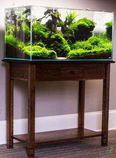 Not a fan of the table but the aquascape is literally flawless