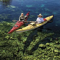 Fabulous Florida Springs-  Ocala Area    SILVER SPRINGS  Kayakers paddling the Silver River look as if they're floating on air. From a glass-bottom boat, I gaze down into the depths of Mammoth Spring.  Just take a boat ride. Glass-bottom boats were invented at Silver Springs in the 1870s, and the tours are still the most popular activity at the park. A first-magnitude spring―one of the largest in the United States―gushes 550 million gallons a day.