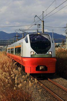 """Limited Express """"Tsugaru"""" (Shin-Aomori, Aomori, Japan)"""