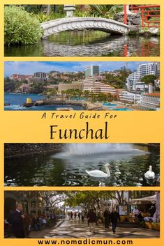 Funchal Travel Guide - 15 Best Attractions in Funchal - NomadicMun - Travelogue Cristiano Ronaldo, Portugal Travel Guide, Visit Portugal, Funchal, The Beautiful Country, Travelogue, Solo Travel, Family Travel, Travel Destinations