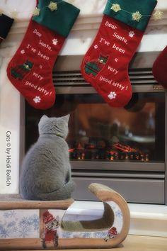 Waiting fur Santa