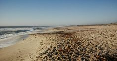Die strand voor Muisbosskerm net buite Lambertsbaai is in die Weskus en dit is geen wonder dat hierdie mooi deel van Suid-Afrika 'n plekkie gewerf het op die lys van 10 mooiste plekke in Suid-Afrika nie. Road Trip, To Go, Van, Adventure, City, Beach, Water, Places, Blog