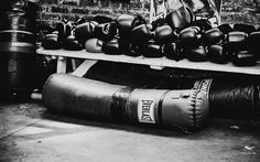 Pleasing Boxing Wallpaper Boxing Wallpapers HD Wallpaper x