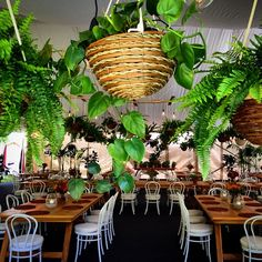 Lush setting for summer #itsajungleoutthere #byronbaystylist @frankandjoy #byronbaywedding