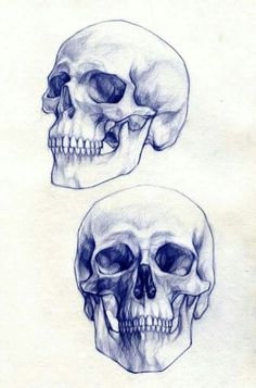 ~ Tattoo Zeichnung der Schädel ~ †: - Art World Skull Reference, Drawing Reference, Figure Drawing, Painting & Drawing, Skull Painting, Drawing Drawing, Drawing Ideas, Tattoo Drawings, Art Drawings