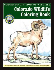 There is a coloring and information page here for more than 40 different local animals. We will be using this to make a wildlife book before our next big camping trip in northwestern Colorado. This is a great resource. Adult Coloring Pages, Coloring Books, Colouring, Bald Eagle Barns, Happy Co, Baby Raccoon, Turtle Painting, Brown Trout, Mountain Lion