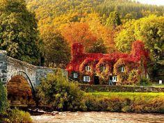 Herfst huis foto