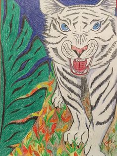 White Tiger Rooster, Drawings, Animals, Animales, Animaux, Sketch, Portrait, Drawing, Resim
