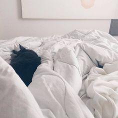 Une autre très belle journée à aider @josianes et @p._.au._.li._.ne à ne pas devenir coucou avec les rédactions des fêtes pour @tonpetitlook et @tplmoms ! Une chance que je peux faire ça de la maison et sous ma @couetteetnaturecanada !! (Avec Miss)  Par @carolanes  @couetteetnature      #restnlive #couetteetnature Bed, Home, Other, Beautiful Day, Peek A Boos, Duvet, Stream Bed, Ad Home, Homes