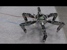 Terrifying spider-like robot does cartwheels; hangs from webs