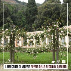 LA LOCATION #AperiaDellaReggiaDiCaserta  2-3 settembre  Il Mercante di Venezia alla Reggia di Caserta